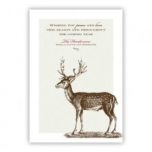 Deer Greeting Card