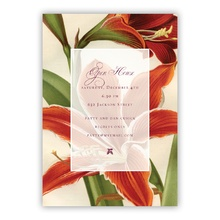 Amaryllis Greeting Card/Invite